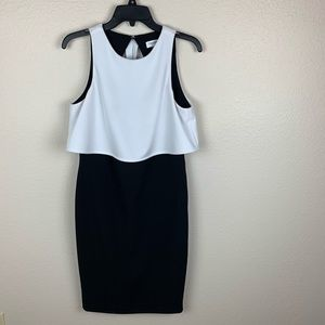 Calvin Klein Black and White Dress 8